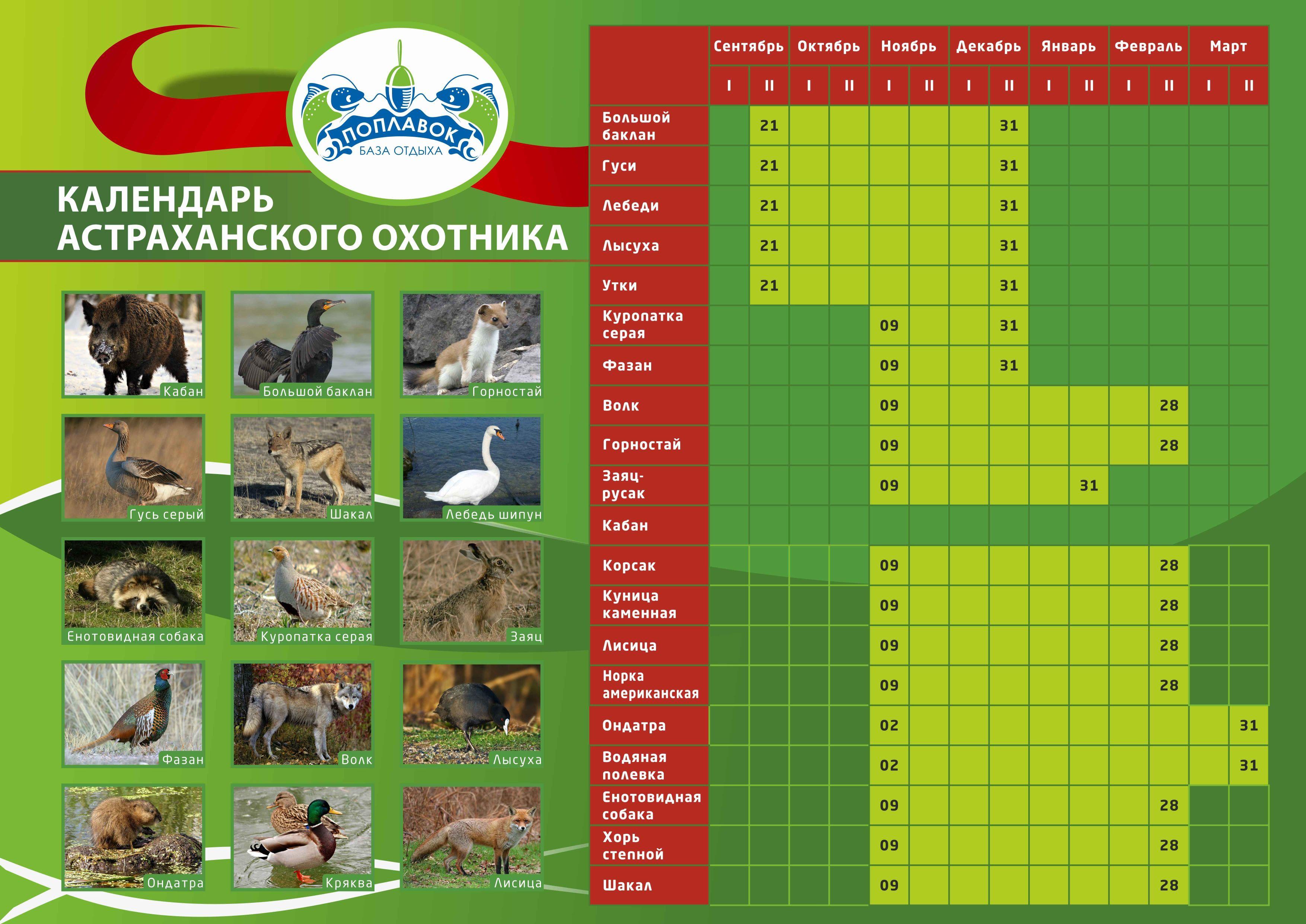 календарь рыболова для лен обл